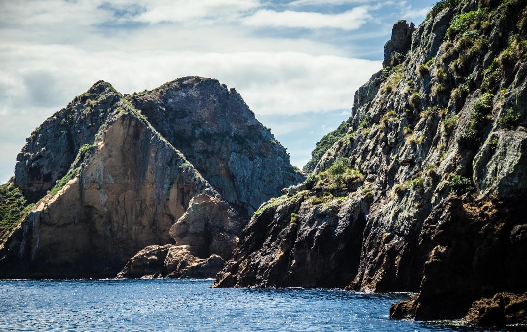 En route vers Tawhiti Rahi et Motu Kapiti, les deux plus larges îles que compte l'archipel. ~ photo par Sean O'Connor